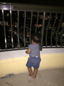 Sammy enjoying the view from the 24th floor.